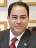 """شريف عارف يكتب : """" الحمار المتهم """" .. يقود الثورة المضادة"""